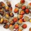 Simulación Artificial de bellota pequeña, decoración de boda, fruta falsa, decoración para el hogar, accesorios de fotografía, 20 Uds., 3,3x2,3 cm