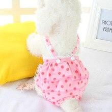 Штаны для собак, женские физиологические трусики, шорты, одежда для собак собачий санитарный костюм, шорты для девочек, собак