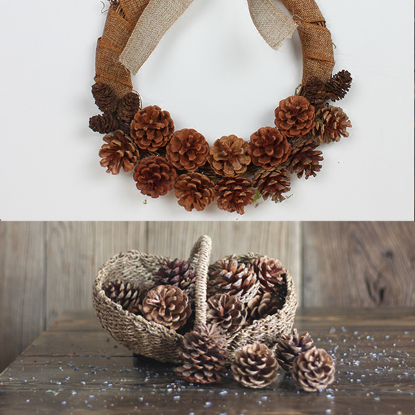 Dried Christmas Decorations