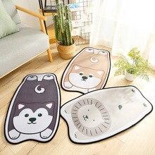 цена на LYN&GY Cartoon Style Dog Cat Lion Print Door Mat Floor Carpet for Living Room Coral Fleece Rug Anti-Slip Doormat Home Decor