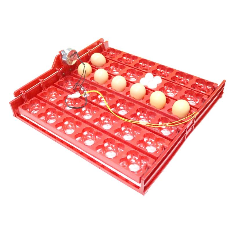 36 Eggs /144 Bird Eggs Automatic Incubator Incubation Equipment Duck Goose Pigeon Quail The Birds Poultry Incubator Equipment36 Eggs /144 Bird Eggs Automatic Incubator Incubation Equipment Duck Goose Pigeon Quail The Birds Poultry Incubator Equipment