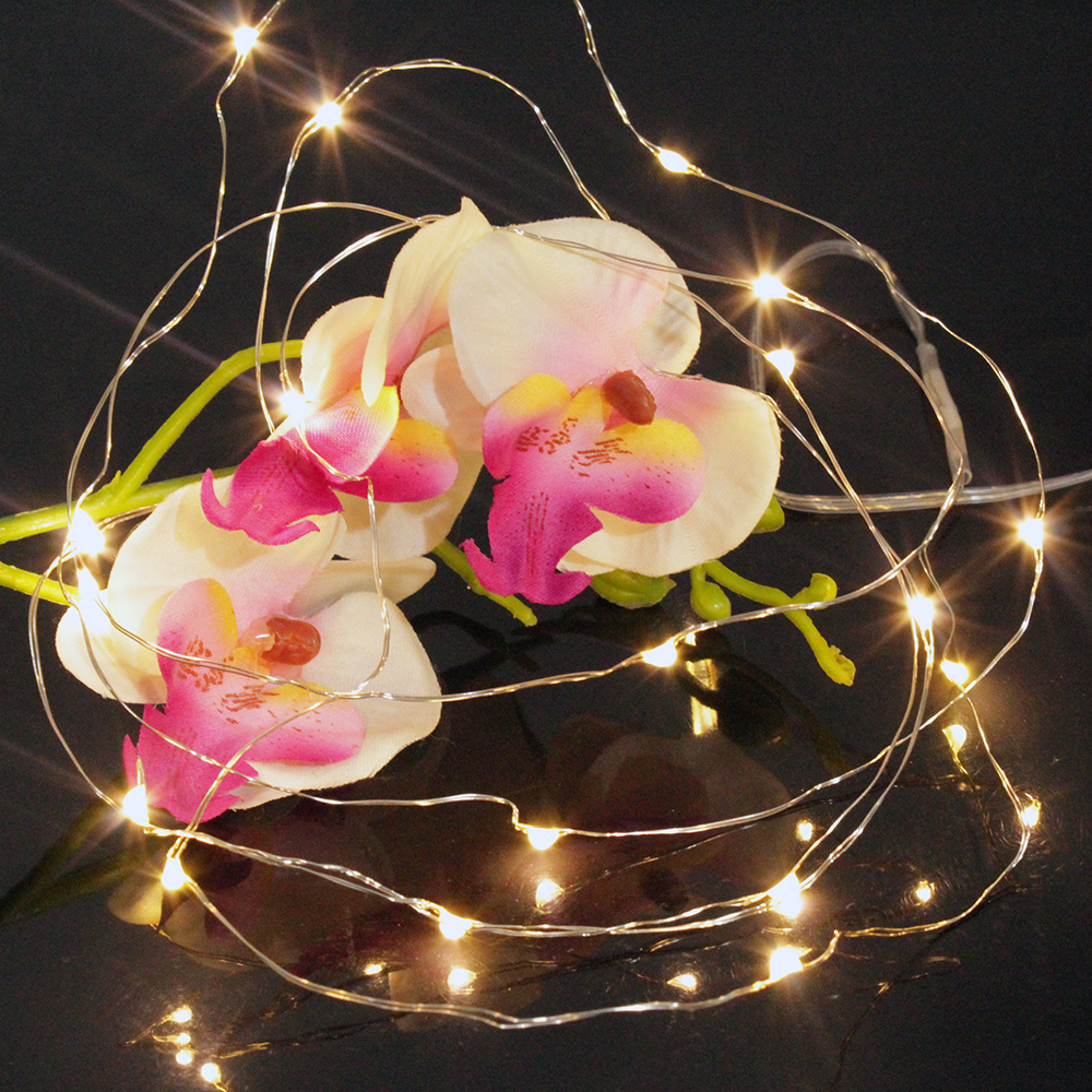 Battery Operated Outdoor String Lights Globe: Led Fairy Lights Battery Operated 20 Warm White Globe Bulb