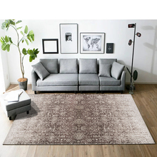 Nordic minimalist abstract Carpets for Living room rug Modern European coffee table mat/Rugs Bedroom bedside model Carpet