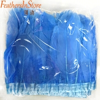 Wholesale 20m/lot sky blue Goose Feather Fringe Trim Dyed geese feather ribbons Dress Skirt Party Clothing Decoration