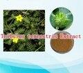 1 Pack de Alta Calidad Polvo de Extracto de Tribulus terrestris 90% Saponinas 400 mg x 100 cápsulas envío libre