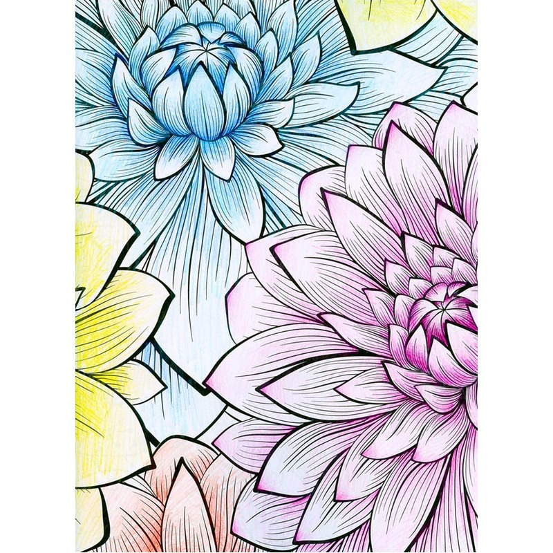 Image 5 - 76 Pges Meditation time adult coloring books graffiti drawing panting book for Children Adult Relieve Stress secret gardenbook itunesbook accountbook flyer -