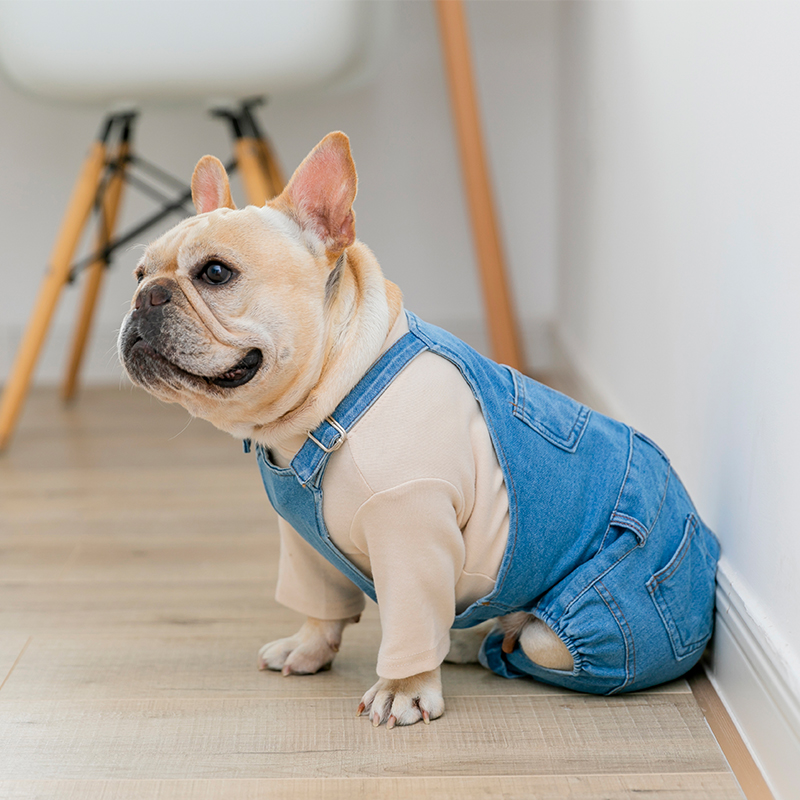 Us 9 88 30 Off Denim Dog Coat Autumn Winter Pets Dogs Clothing Fat Clothes Fashion Pet French Bulldog Puppy Costume Pug Jacket In