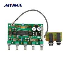 Aiyima 1 шт. предусилитель NE5532 караоке микрофон усилитель плата предусилителя бас твитер звук тон управление реверберации доска