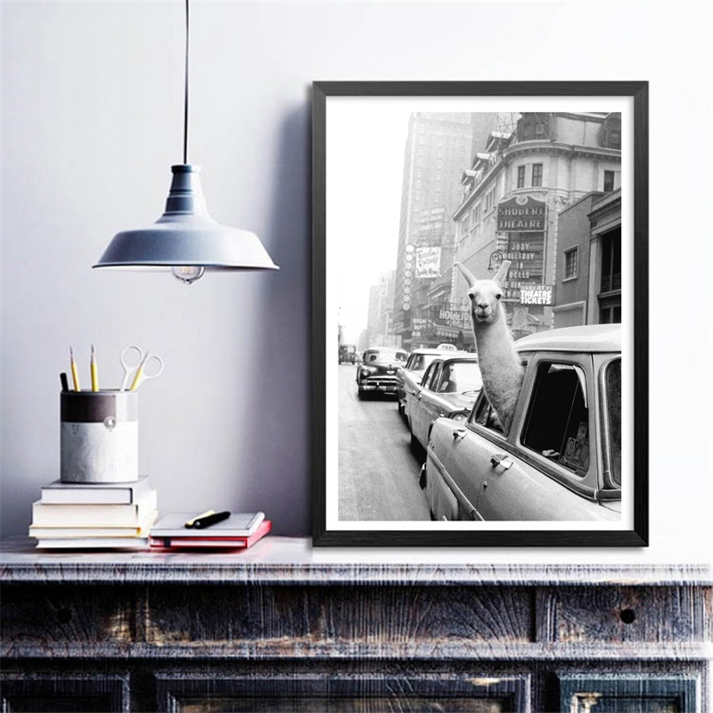 Llama in a taxi on Times Square Canvas Print and Poster Vintage llama Print New York Llama in a taxi on Times Square Canvas Print and Poster Vintage llama Print New York City Photo Picture Wall Art Home Decor