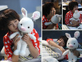 Free shipping 55cm special cute soft anime pig rabbit cuddly sleep plush animal doll hold pillow stuffed toy birthday gift 1 pc