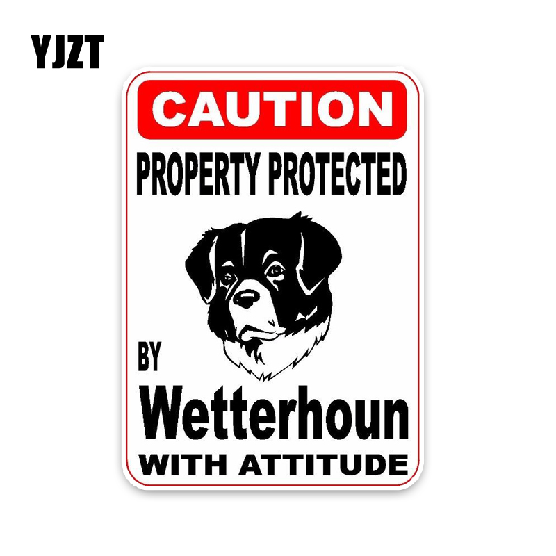 Wetterhoun Dog Decal