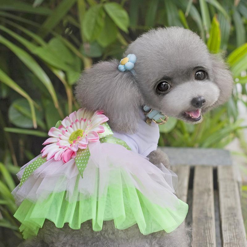 Pet Clothing Dog Dress for Dog Clothes Spring And Summer Petals Trade Brand Tutu Dress