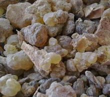 Pure Natural Frankincense Essential Oil Anti Aging Restores skins Elasticity