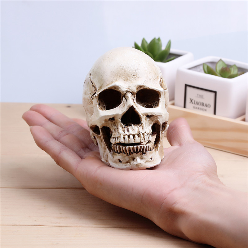 Skull Sculpture Resin Crafts Halloween Decoration Medical Painting Movie Special Props Handmade High Quality