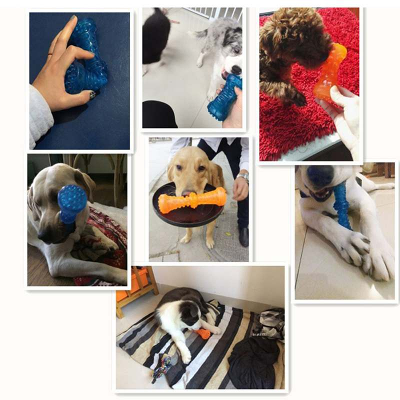 Pet Supplies Dog Toy Chew Rubber Bell Squeaky Sound Toys Funny Games Interactive Pacifier Bone Doggy Puppy Toys