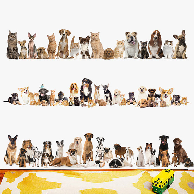 dogs cats baseboard wall stickers pvc art wall decals adhesive art