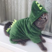 Funny Dinosaur Costumes Coat Winter Warm