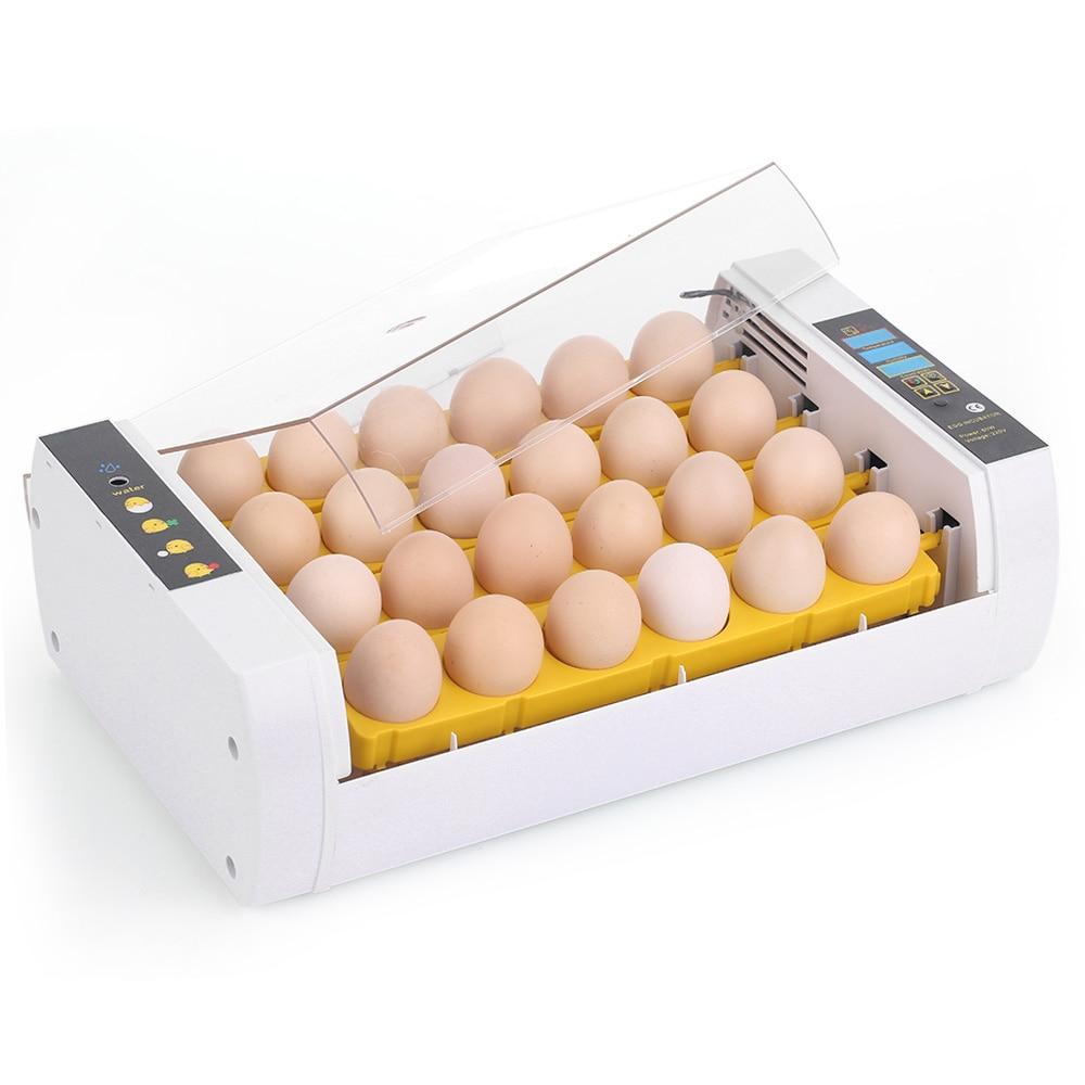 24 uova Incubatrice Dell'uovo Automatico Intelligente di Controllo della Temperatura Hatcher Da Cova uova di Gallina Anatra Uccello Quaglia Pollame-in Accessori per alimentazione e abbeveraggio da Casa e giardino su  Gruppo 3
