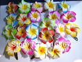 40 mixed color Foam Hawaiian Plumeria flower Frangipani Flower bridal hair clip 4.5cm