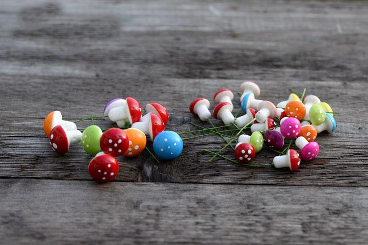 Miniature Mushrooms