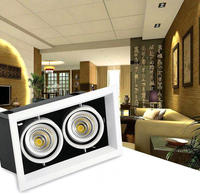 Super Bright 2x15W Dimmable Double Heads COB Aluminum Recessed Square 30W COB LED Ceiling Downlight 3