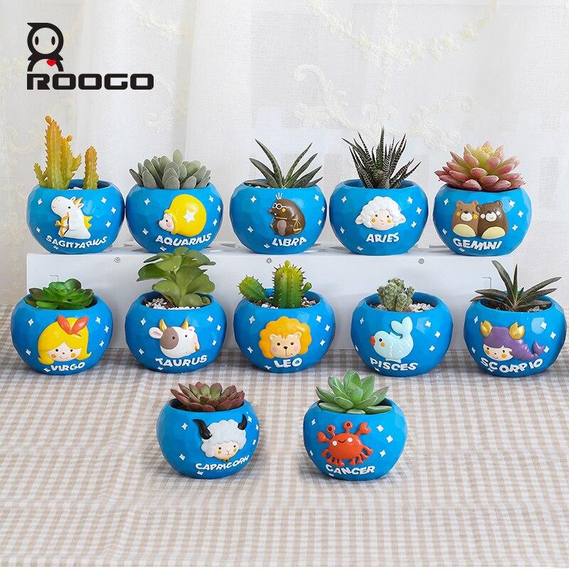 Image 2 - Roogo mini blue 12 horoscopes flowerpot landscape plant bonsai succulent pots desk garden yard decoration best gift items-in Flower Pots & Planters from Home & Garden