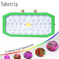 1000W LED Grow Lights full spectrum Plant Growth Light for indoor seedling Greenhouse Hydroponic tent phyto lamp