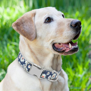 Image 4 - カスタム犬の首輪ナイロン花刻まペットの子犬の首輪プリントパーソナライズ名前首輪小中大犬ピットブル