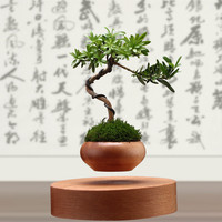 Magnetic Levitation Potted Little Lolita S Smiling Face Specially Made Of Solid Wood Potted In The