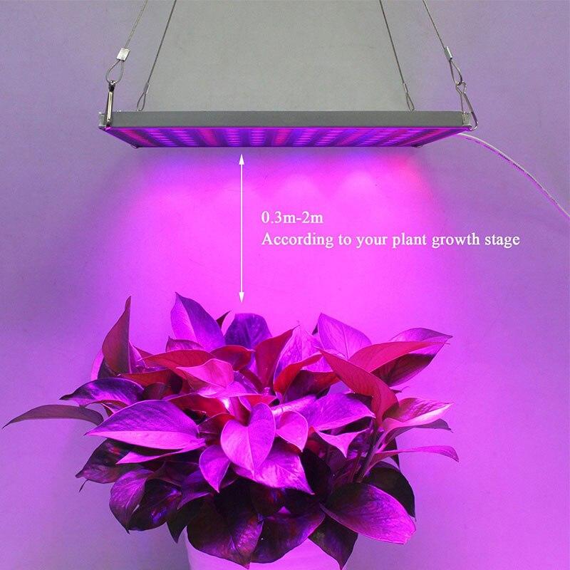 45W LED բույսերի աճեցման թեթև վահանակի - Մասնագիտական լուսավորություն - Լուսանկար 2