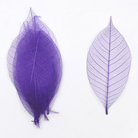 Purple Diamond Vein Natural Magnolia Vein Dried Flowers Multicolor Into Handmade Glass Epoxy Filler Material