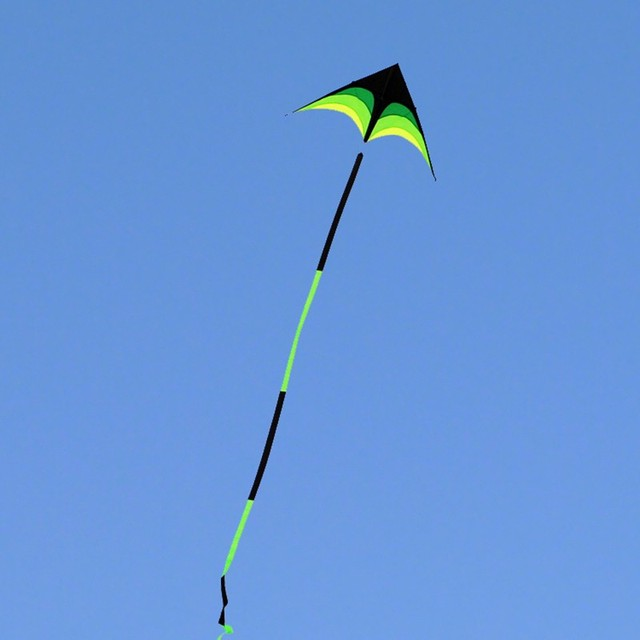 free shipping high quality large delta kites tails with handle outdoor toys for kids kites nylon ripstop albatross kite factory 2