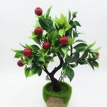 Garden Plants Trees Furniture