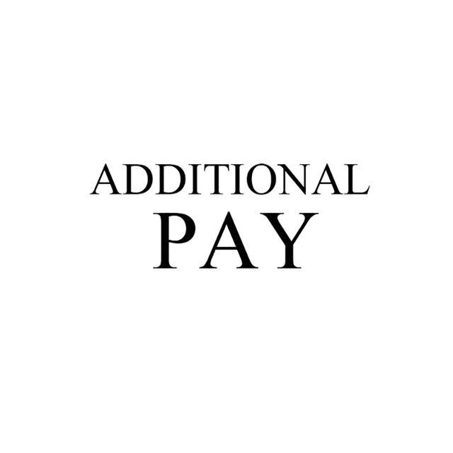 Дополнительная оплата по Вашему заказу, пожалуйста, свяжитесь с нами перед оплатой