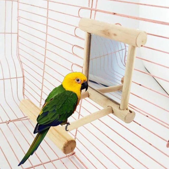 Mirror for Little Birds