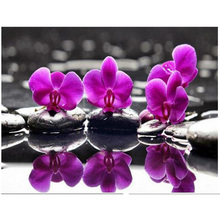 Diamond Embroidery 5D DIY Diamond Painting Orchids and Stones Diamond Painting Cross Stitch Rhinestone Decor Flowers KL410