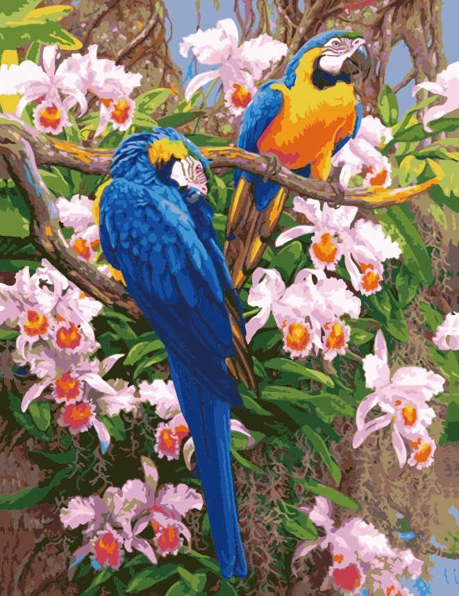 Hot DIY Oil Painting By Numbers Animals Parrot Frameless Painting On Canvas Home Decoration Home Wall Kids Room Deco bird