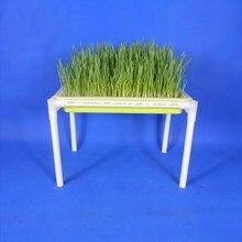 Новые 1 Набор 2-слой Детские лотки Поддержка для ростки фасоли поднос для рассады блюд проростков пшеницы кассеты для рассады домашнее растение инструменты