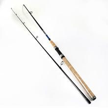 FISH KING 99% Carbon 2.1M 2.4M 2.7M 2 Section Soft Lure Fishing Rod Lure Weight 3-40g Spinning Fishing Rod For Lure Fishing