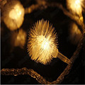 2 string Battery lights LED String Christmas Lights Dandelion Wedding Wedding Garlands Christmas Edelweiss Christmas Lights