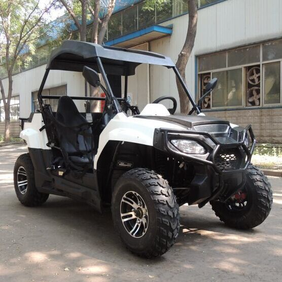 Big Power Beach Buggy Car Two Person Off Road Vehicle In