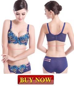 2fd7083381c Girl butterfly bra set intimates vs bra and panty set cute lace suede push  up triumph brassiere brand sujetador conjuntos W-27