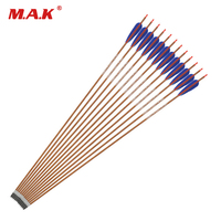 35 Inches Carbon Arrows 4 Inch Turkey Feather Changeable Head Spine 600/700 For Archery Hunting/Shooting