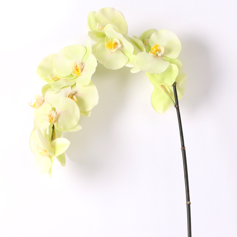Fashion brief design 46 phalaenopsis orchid silk flower single stem fashion brief design 46 phalaenopsis orchid silk flower single stem in green wedding decoration free shipping in artificial dried flowers from home mightylinksfo