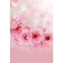 Vinyl Pink peach flowers baby photography backdrops fabric digital printing background for photo studio background photophone(China)