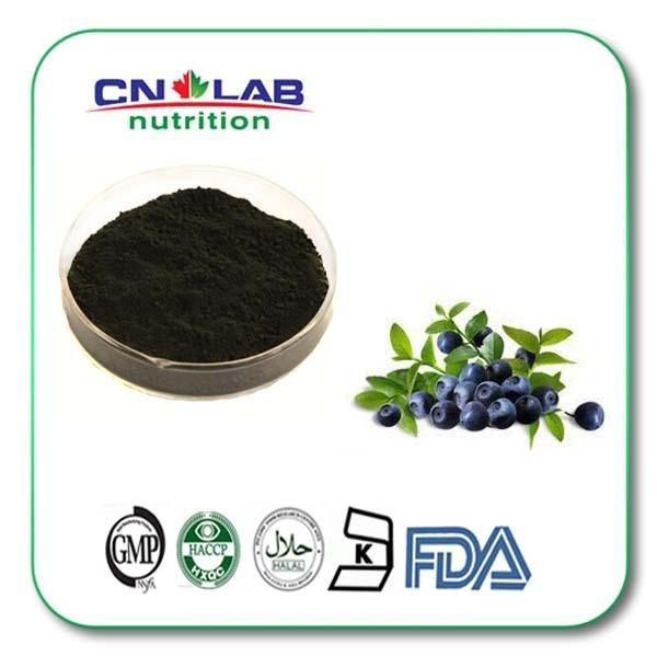 500g Organic Anthocyanidin blueberry Bilberry Cranberry Extract edible high blueberry extract 5