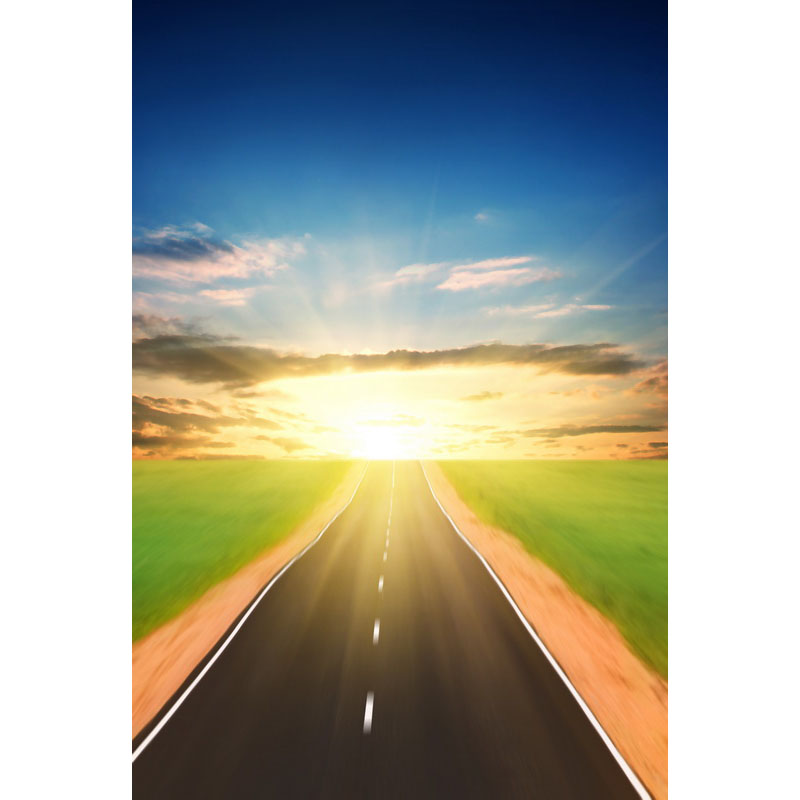 Seamless Vinyl Photography Backdrop Road on the Green Wild Computer Printed Scenic Nature Backgrounds for Photo Studio F-3165 photo vinyl backdrop top promotion studio photography backgrounds 6 5ftx10ft 2x3m computer paint foldable free shipping