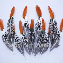 Freeshipping! 50Pcs/Lot 9-15cm  Loose Nature RED TIPPED LADY AMHERST PHEASANT FEATHERS