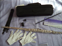 Professional FL 471 16 Holes Opening C Tone Flute White Copper Silver Plated Musical Instruments With Case And Accessories
