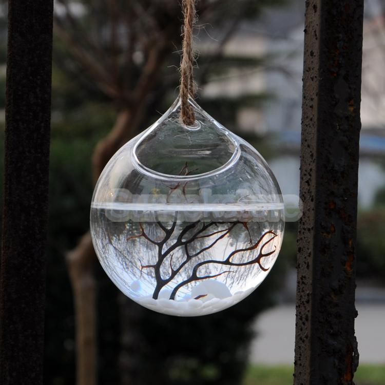 claro bola colgando florero de cristal en forma de botella para la planta de flor decoracin